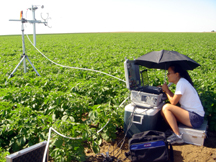 measuring nitrogen emissions from potato crops