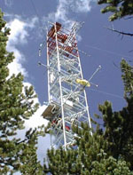 Niwot Ridge tower